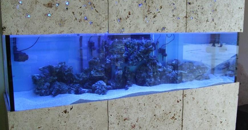 Akvariumo akmens apdaila